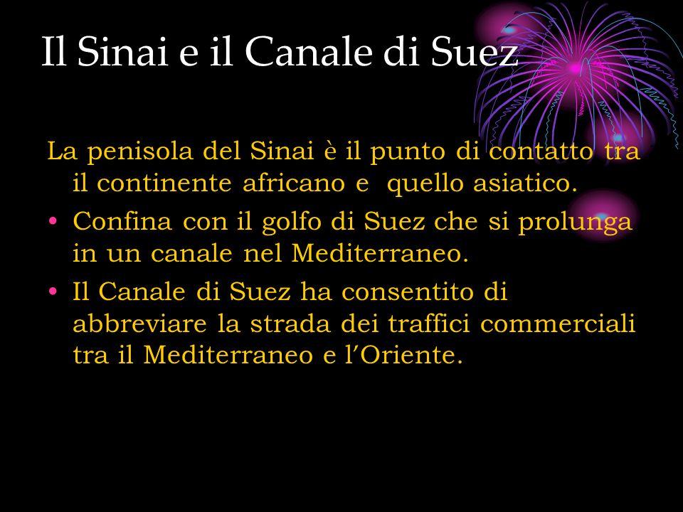Il Sinai e il Canale di Suez La penisola del Sinai è il punto di contatto tra il continente africano e quello asiatico. Confina con il golfo di Suez c