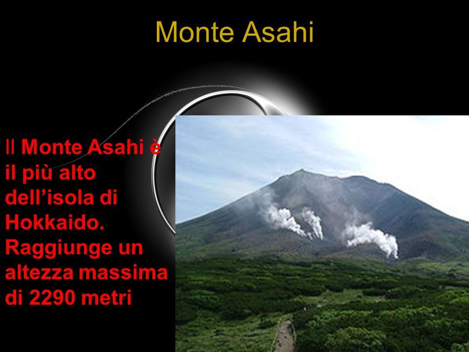 Monte Asahi Il Monte Asahi è il più alto dellisola di Hokkaido. Raggiunge un altezza massima di 2290 metri