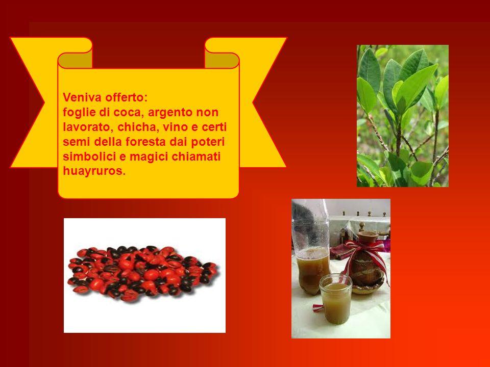 Veniva offerto: foglie di coca, argento non lavorato, chicha, vino e certi semi della foresta dai poteri simbolici e magici chiamati huayruros.
