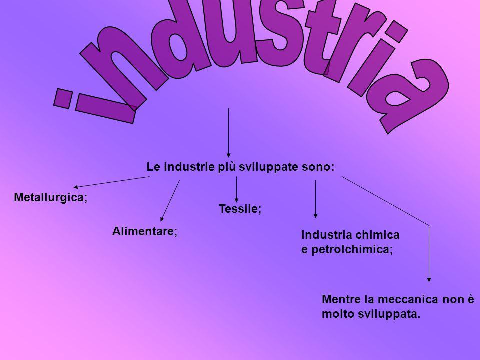 Le industrie più sviluppate sono: Metallurgica; Tessile; Alimentare; Industria chimica e petrolchimica; Mentre la meccanica non è molto sviluppata.