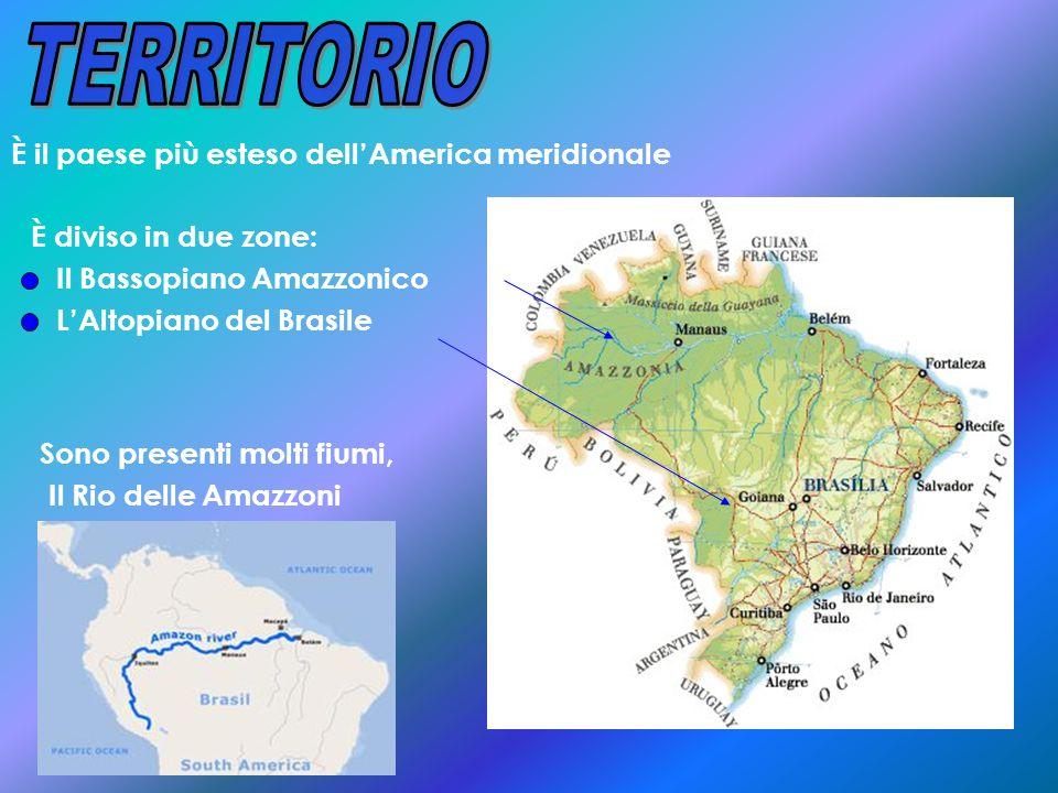 È il paese più esteso dellAmerica meridionale È diviso in due zone: Il Bassopiano Amazzonico LAltopiano del Brasile Sono presenti molti fiumi, Il Rio