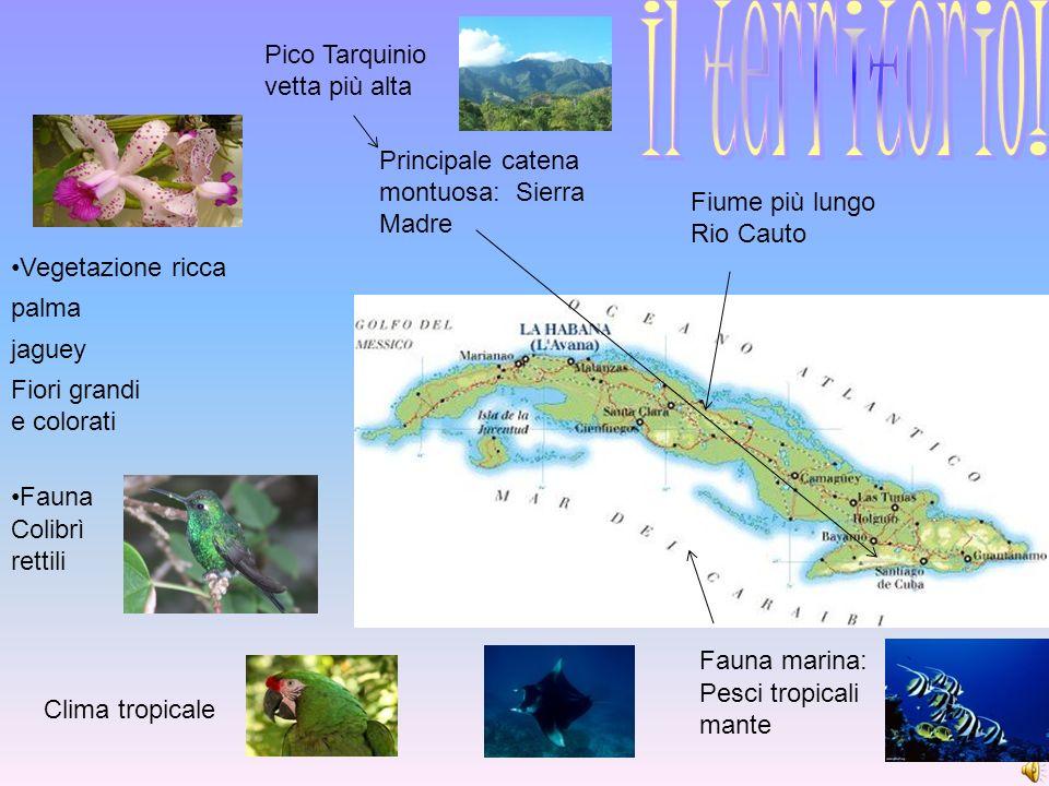 Principale catena montuosa: Sierra Madre Pico Tarquinio vetta più alta Fiume più lungo Rio Cauto Clima tropicale Vegetazione ricca palma jaguey Fiori