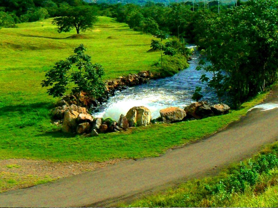 Le immagini di: Salto Angel, Laguna di Canaima, Parchi naturali, Gran Sabana e la città! La cascata Angelo!Laguna di Canaima Tepui! Parchi