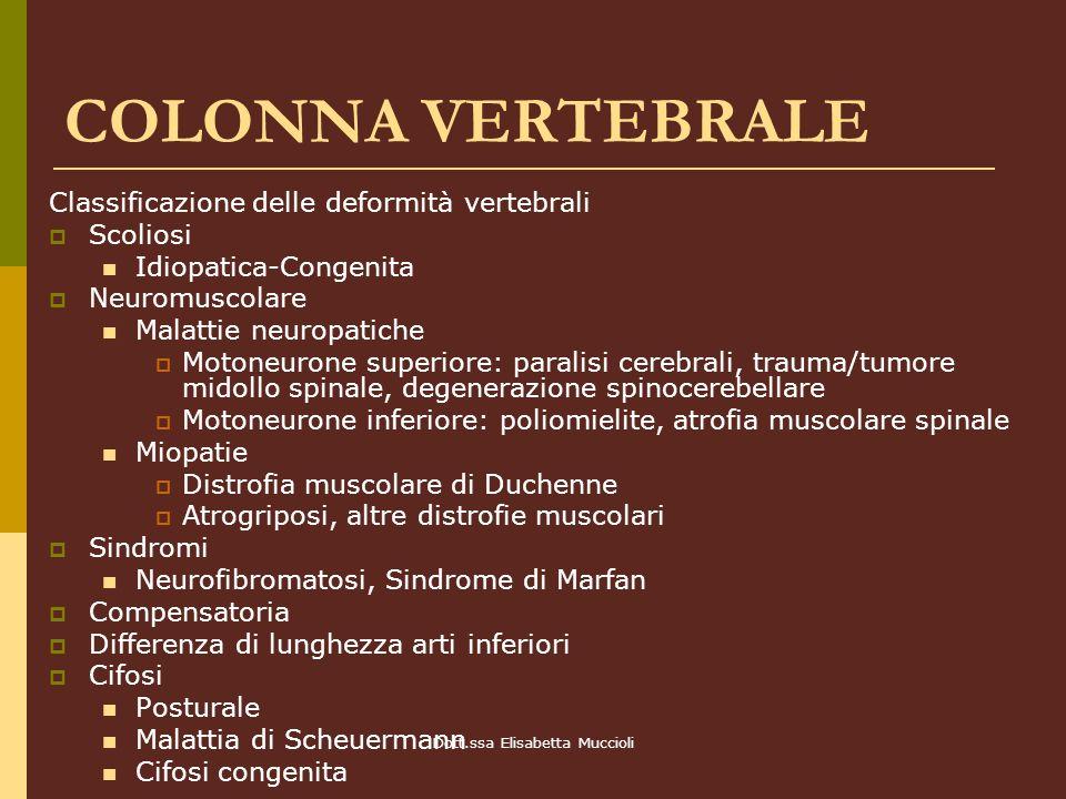 Dott.ssa Elisabetta Muccioli COLONNA VERTEBRALE Classificazione delle deformità vertebrali Scoliosi Idiopatica-Congenita Neuromuscolare Malattie neuro