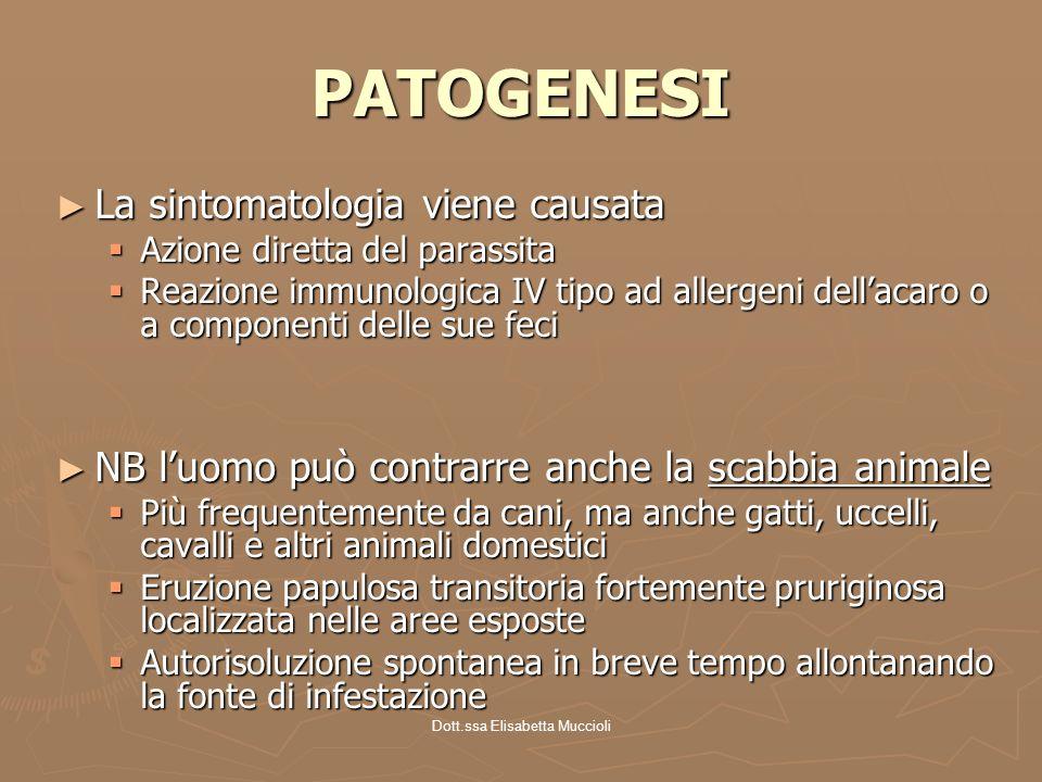 Dott.ssa Elisabetta Muccioli PATOGENESI La sintomatologia viene causata La sintomatologia viene causata Azione diretta del parassita Azione diretta de