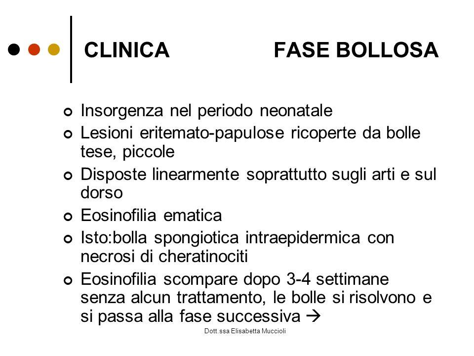 CLINICAFASE BOLLOSA Insorgenza nel periodo neonatale Lesioni eritemato-papulose ricoperte da bolle tese, piccole Disposte linearmente soprattutto sugl