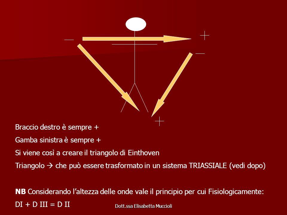 Dott.ssa Elisabetta Muccioli Braccio destro è sempre + Gamba sinistra è sempre + Si viene così a creare il triangolo di Einthoven Triangolo che può es