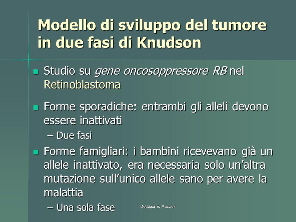 Dott.ssa E. Muccioli Modello di sviluppo del tumore in due fasi di Knudson Studio su gene oncosoppressore RB nel Retinoblastoma Studio su gene oncosop