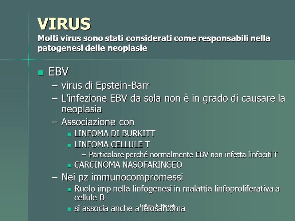 Dott.ssa E. Muccioli VIRUS Molti virus sono stati considerati come responsabili nella patogenesi delle neoplasie EBV EBV –virus di Epstein-Barr –Linfe