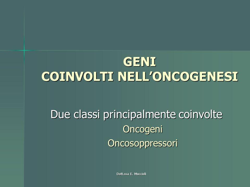 Dott.ssa E. Muccioli GENI COINVOLTI NELLONCOGENESI Due classi principalmente coinvolte OncogeniOncosoppressori