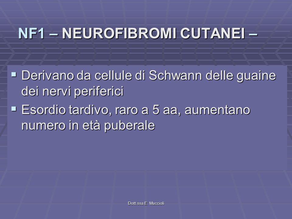 Dott.ssa E. Muccioli Derivano da cellule di Schwann delle guaine dei nervi periferici Derivano da cellule di Schwann delle guaine dei nervi periferici