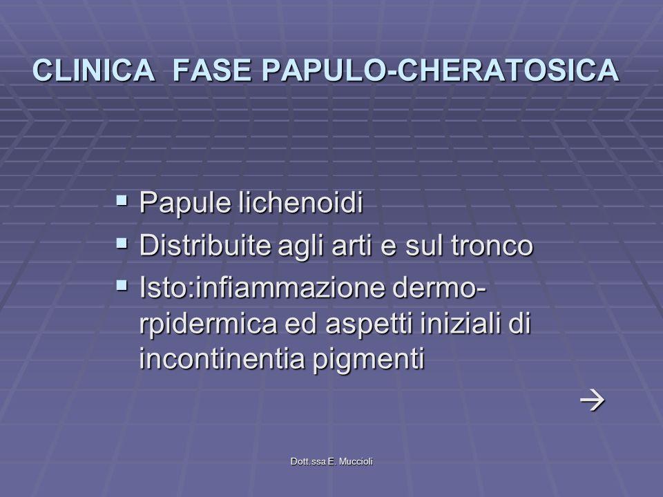 Dott.ssa E. Muccioli CLINICA FASE PAPULO-CHERATOSICA Papule lichenoidi Papule lichenoidi Distribuite agli arti e sul tronco Distribuite agli arti e su