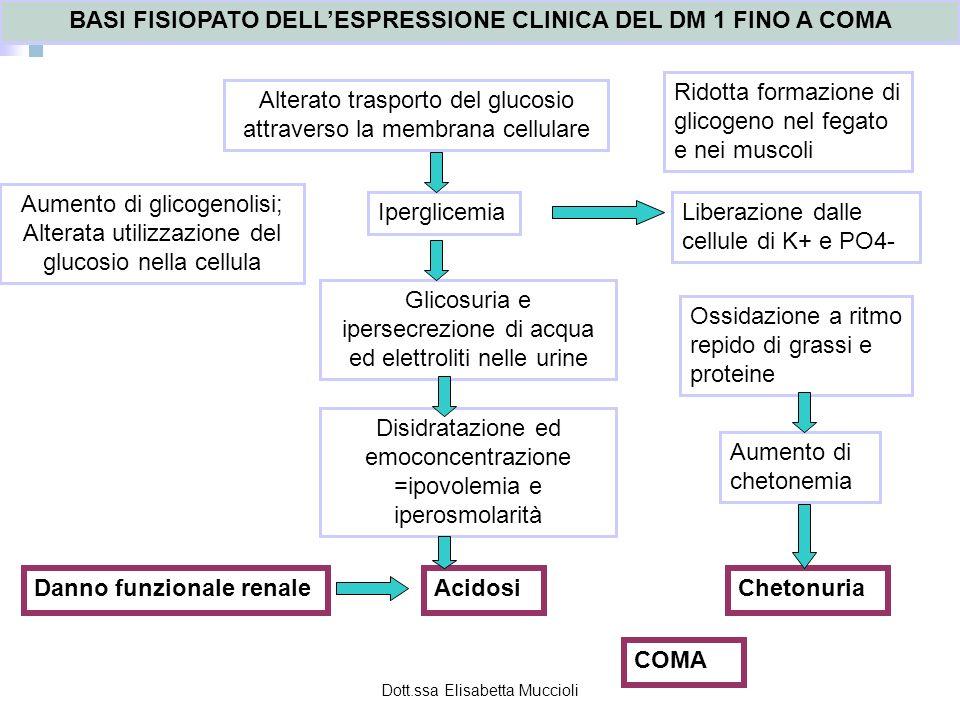 Dott.ssa Elisabetta Muccioli BASI FISIOPATO DELLESPRESSIONE CLINICA DEL DM 1 FINO A COMA Alterato trasporto del glucosio attraverso la membrana cellul