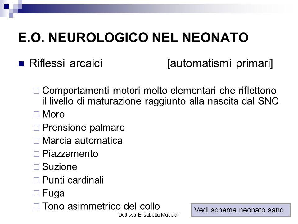Dott.ssa Elisabetta Muccioli E.O. NEUROLOGICO NEL NEONATO Riflessi arcaici[automatismi primari] Comportamenti motori molto elementari che riflettono i