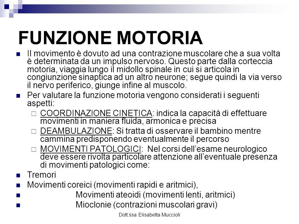 Dott.ssa Elisabetta Muccioli FUNZIONE MOTORIA Il movimento è dovuto ad una contrazione muscolare che a sua volta è determinata da un impulso nervoso.