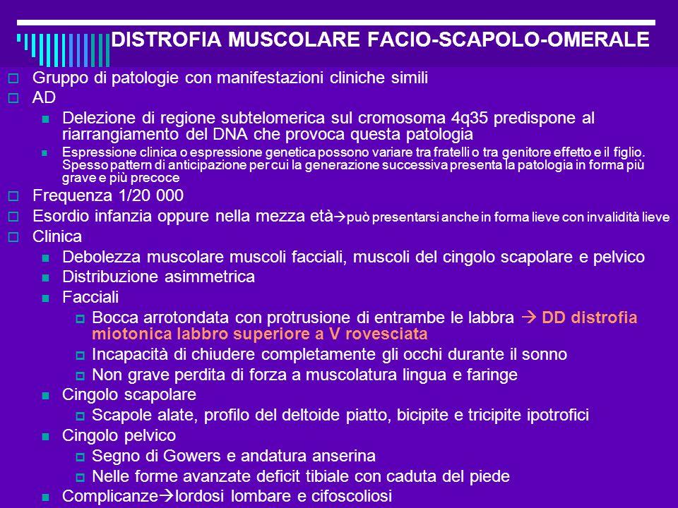 Dott.ssa Elisabetta Muccioli DISTROFIA MUSCOLARE FACIO-SCAPOLO-OMERALE Gruppo di patologie con manifestazioni cliniche simili AD Delezione di regione