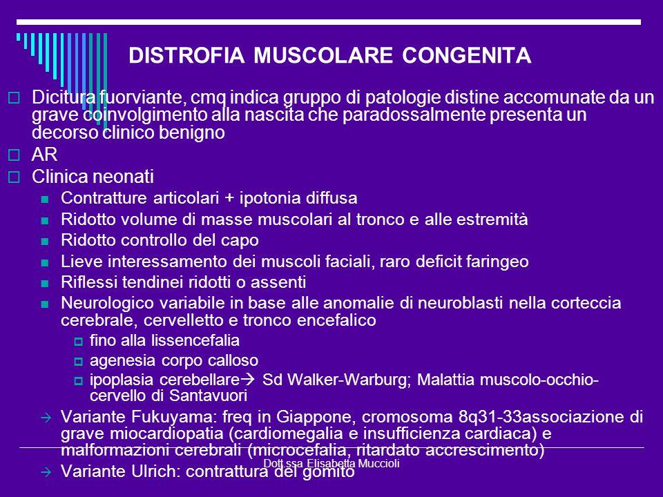 Dott.ssa Elisabetta Muccioli DISTROFIA MUSCOLARE CONGENITA Dicitura fuorviante, cmq indica gruppo di patologie distine accomunate da un grave coinvolg