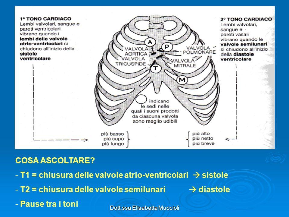 Dott.ssa Elisabetta Muccioli COSA ASCOLTARE? - T1 = chiusura delle valvole atrio-ventricolari sistole - T2 = chiusura delle valvole semilunari diastol