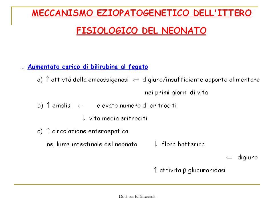 Dott.ssa E. Muccioli