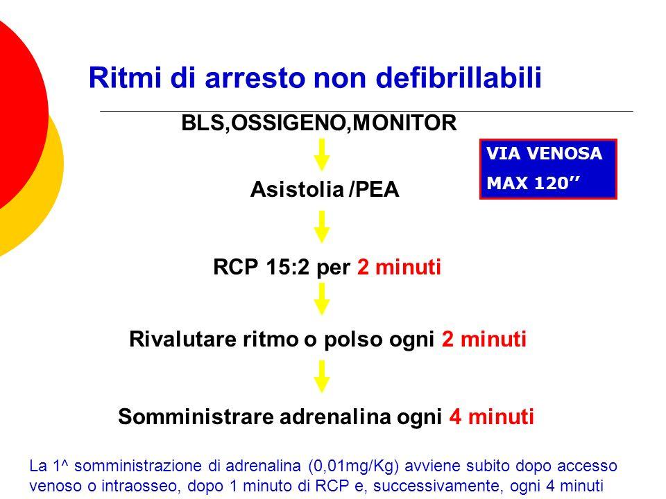Dott.ssa Elisabetta Muccioli Ritmi di arresto non defibrillabili Somministrare adrenalina ogni 4 minuti La 1^ somministrazione di adrenalina (0,01mg/K