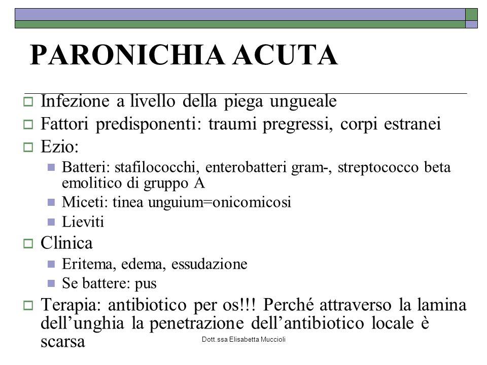 Dott.ssa Elisabetta Muccioli PARONICHIA ACUTA Infezione a livello della piega ungueale Fattori predisponenti: traumi pregressi, corpi estranei Ezio: B
