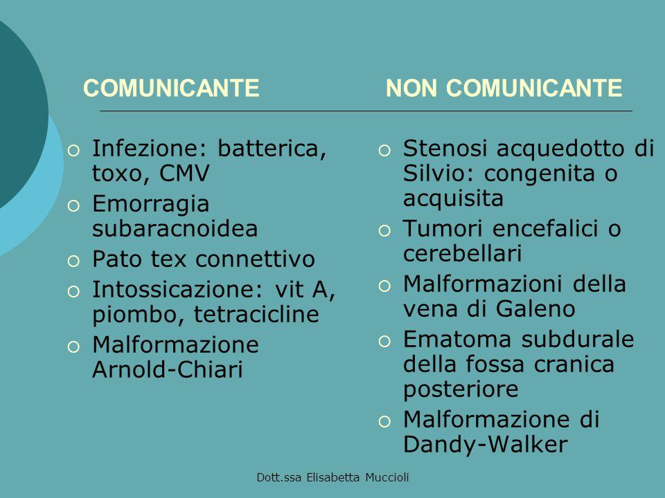 Dott.ssa Elisabetta Muccioli COMUNICANTE NON COMUNICANTE Infezione: batterica, toxo, CMV Emorragia subaracnoidea Pato tex connettivo Intossicazione: v