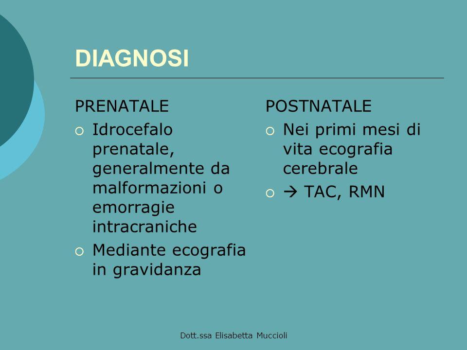 Dott.ssa Elisabetta Muccioli DIAGNOSI PRENATALE Idrocefalo prenatale, generalmente da malformazioni o emorragie intracraniche Mediante ecografia in gr
