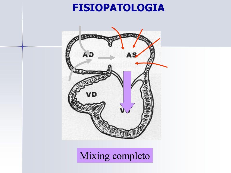 Dott.ssa Elisabetta Muccioli Fisiopatologia Mixing completo FISIOPATOLOGIA