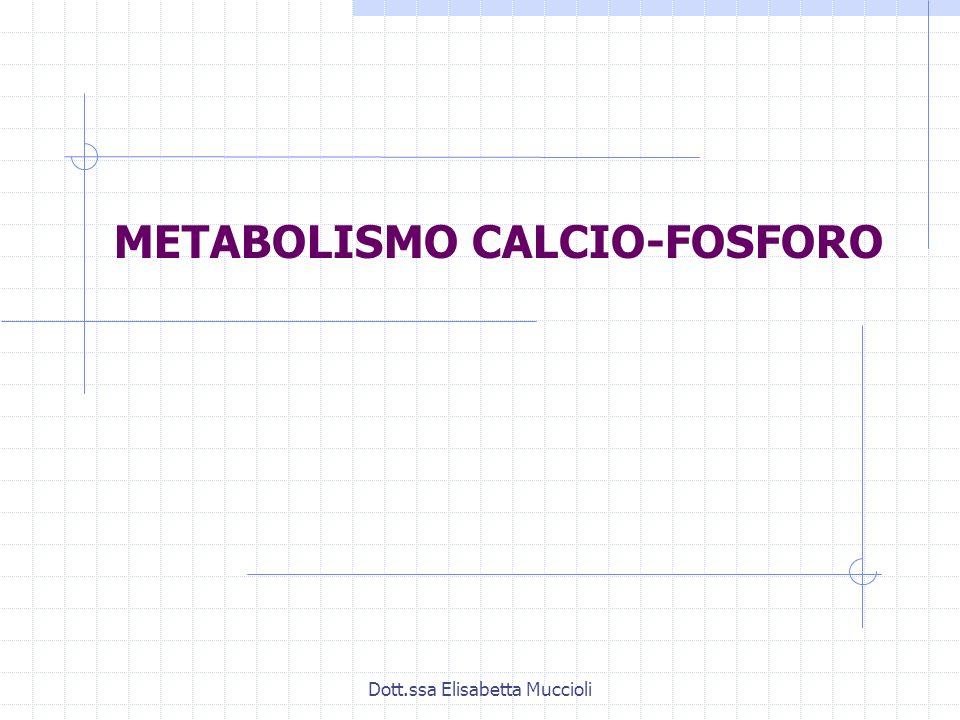 Dott.ssa Elisabetta Muccioli METABOLISMO CALCIO-FOSFORO