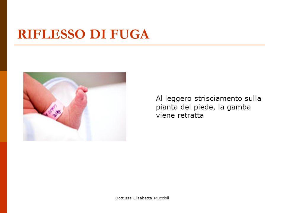 Dott.ssa Elisabetta Muccioli RIFLESSO DI FUGA Al leggero strisciamento sulla pianta del piede, la gamba viene retratta