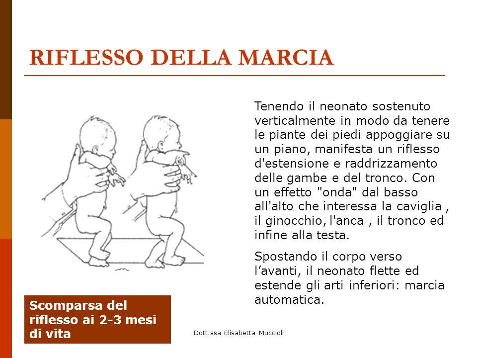 Dott.ssa Elisabetta Muccioli RIFLESSO DELLA MARCIA Tenendo il neonato sostenuto verticalmente in modo da tenere le piante dei piedi appoggiare su un p