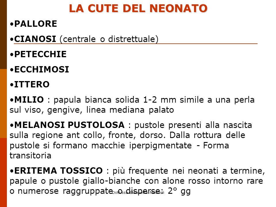 Dott.ssa Elisabetta Muccioli LA CUTE DEL NEONATO PALLORE CIANOSI (centrale o distrettuale) PETECCHIE ECCHIMOSI ITTERO MILIO : papula bianca solida 1-2