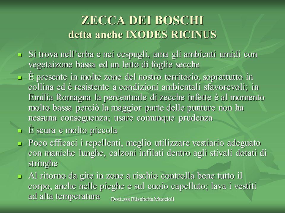 Dott.ssa Elisabetta Muccioli ZECCA DEI BOSCHI detta anche IXODES RICINUS Si trova nellerba e nei cespugli, ama gli ambienti umidi con vegetaizone bass