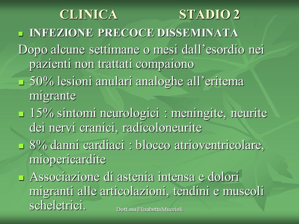 Dott.ssa Elisabetta Muccioli CLINICASTADIO 2 INFEZIONE PRECOCE DISSEMINATA INFEZIONE PRECOCE DISSEMINATA Dopo alcune settimane o mesi dallesordio nei