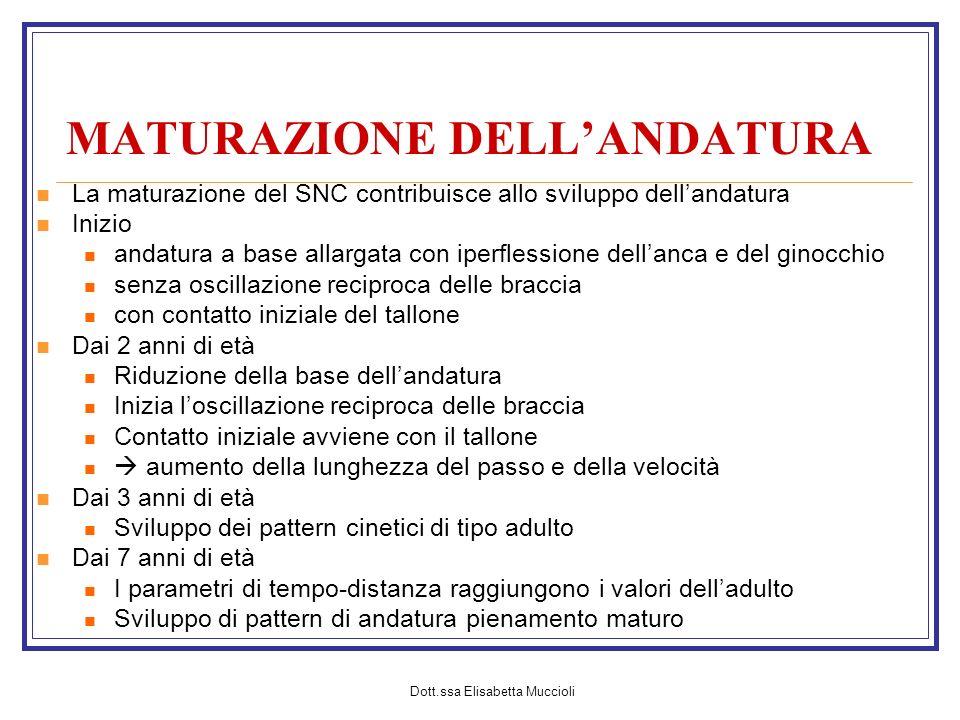 Dott.ssa Elisabetta Muccioli MATURAZIONE DELLANDATURA La maturazione del SNC contribuisce allo sviluppo dellandatura Inizio andatura a base allargata