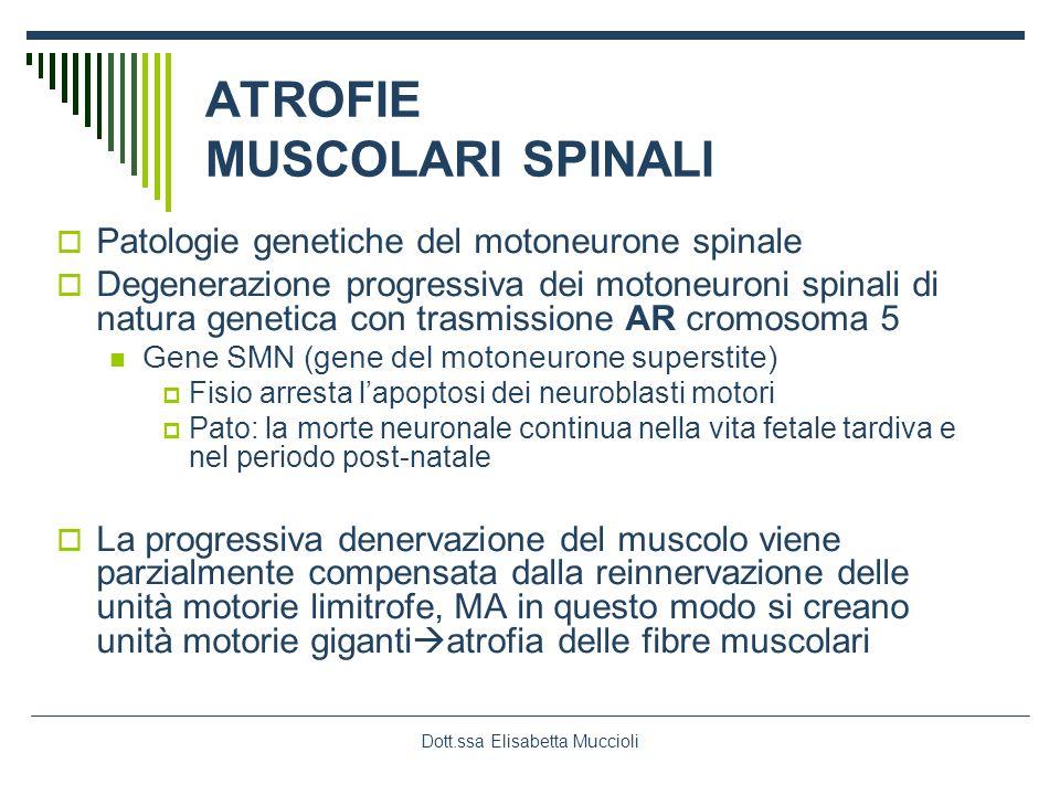 Dott.ssa Elisabetta Muccioli ATROFIE MUSCOLARI SPINALI Patologie genetiche del motoneurone spinale Degenerazione progressiva dei motoneuroni spinali d