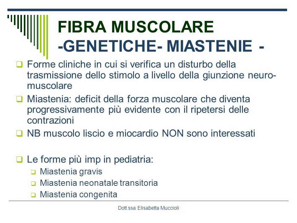 Dott.ssa Elisabetta Muccioli FIBRA MUSCOLARE -GENETICHE- MIASTENIE - Forme cliniche in cui si verifica un disturbo della trasmissione dello stimolo a
