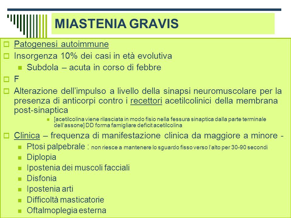 Dott.ssa Elisabetta Muccioli MIASTENIA GRAVIS Patogenesi autoimmune Insorgenza 10% dei casi in età evolutiva Subdola – acuta in corso di febbre F Alte