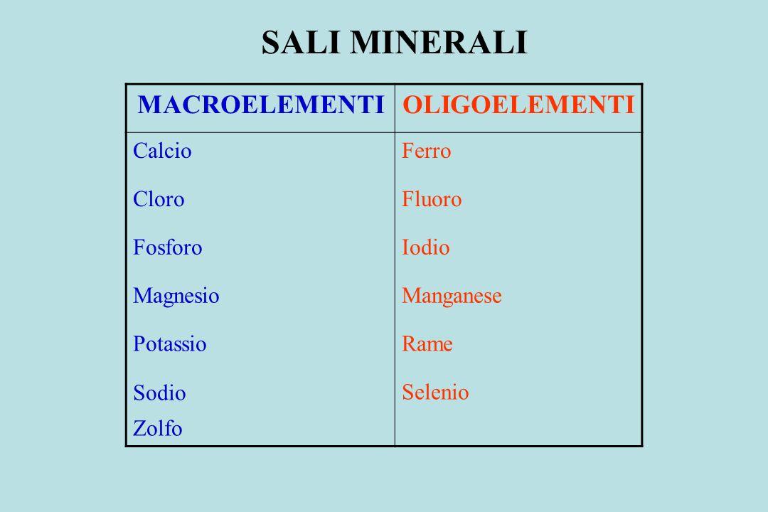 MACROELEMENTIOLIGOELEMENTI CalcioFerro CloroFluoro FosforoIodio MagnesioManganese PotassioRame Sodio Zolfo Selenio SALI MINERALI