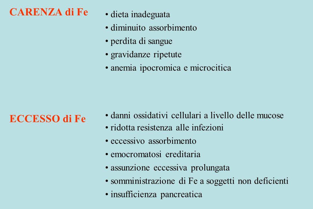 dieta inadeguata diminuito assorbimento perdita di sangue gravidanze ripetute anemia ipocromica e microcitica danni ossidativi cellulari a livello del