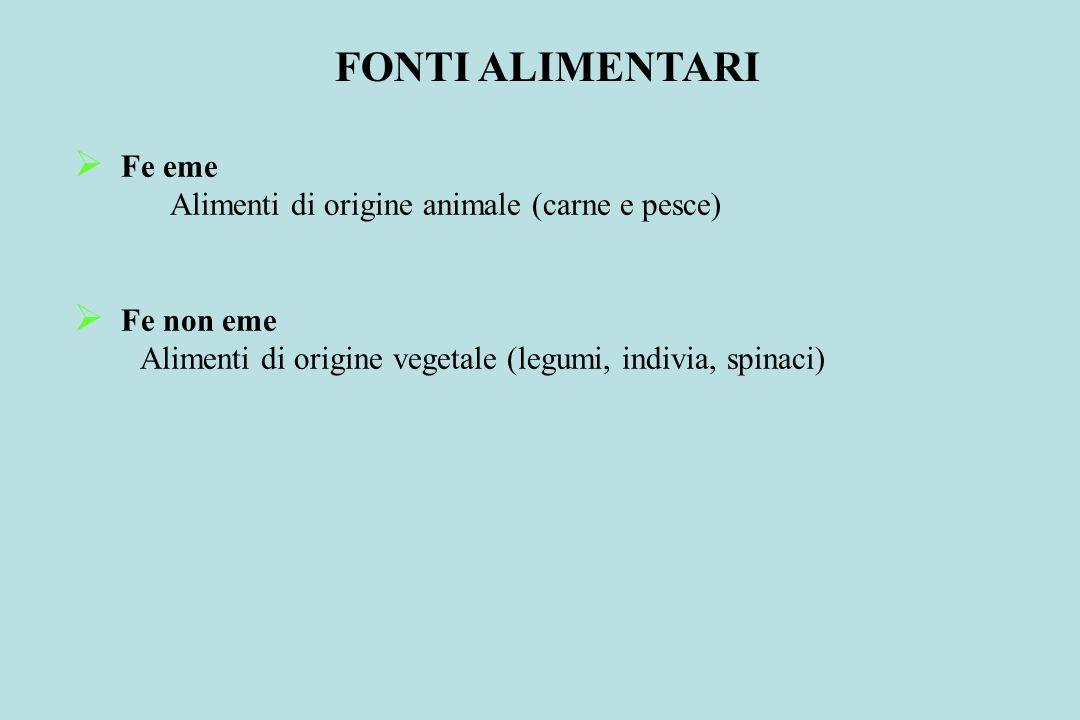 Fe eme Alimenti di origine animale (carne e pesce) Fe non eme Alimenti di origine vegetale (legumi, indivia, spinaci) FONTI ALIMENTARI