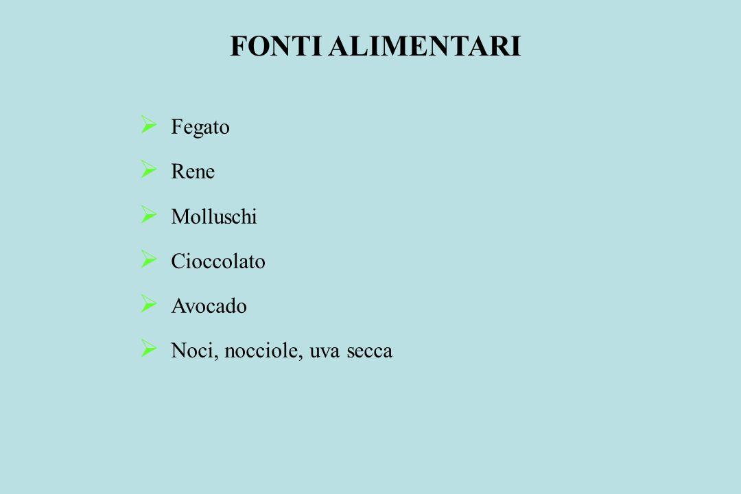 FONTI ALIMENTARI Fegato Rene Molluschi Cioccolato Avocado Noci, nocciole, uva secca