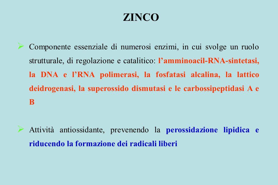 ZINCO Componente essenziale di numerosi enzimi, in cui svolge un ruolo strutturale, di regolazione e catalitico: lamminoacil-RNA-sintetasi, la DNA e l