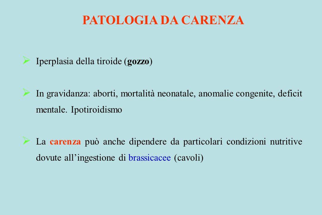 PATOLOGIA DA CARENZA Iperplasia della tiroide (gozzo) In gravidanza: aborti, mortalità neonatale, anomalie congenite, deficit mentale. Ipotiroidismo L