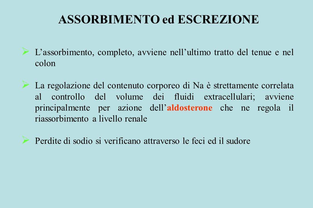 ASSORBIMENTO ed ESCREZIONE Lassorbimento, completo, avviene nellultimo tratto del tenue e nel colon La regolazione del contenuto corporeo di Na è stre