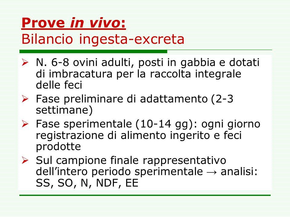 Prove in vivo: Bilancio ingesta-excreta N. 6-8 ovini adulti, posti in gabbia e dotati di imbracatura per la raccolta integrale delle feci Fase prelimi