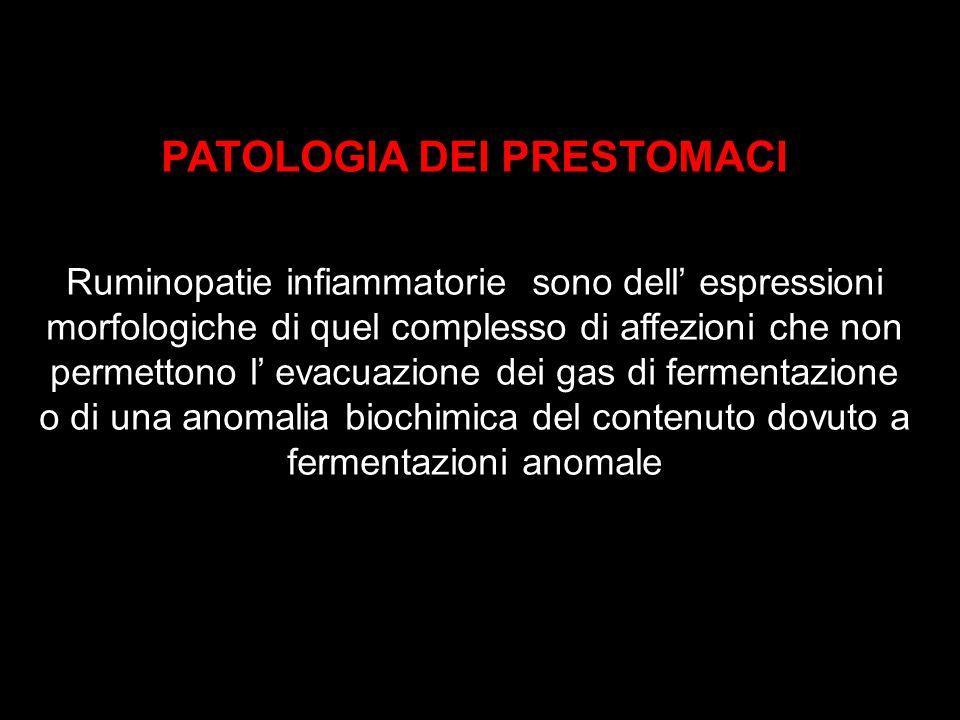 PATOLOGIA DEI PRESTOMACI Ruminopatie infiammatorie sono dell espressioni morfologiche di quel complesso di affezioni che non permettono l evacuazione