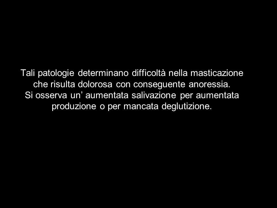 Tali patologie determinano difficoltà nella masticazione che risulta dolorosa con conseguente anoressia. Si osserva un aumentata salivazione per aumen