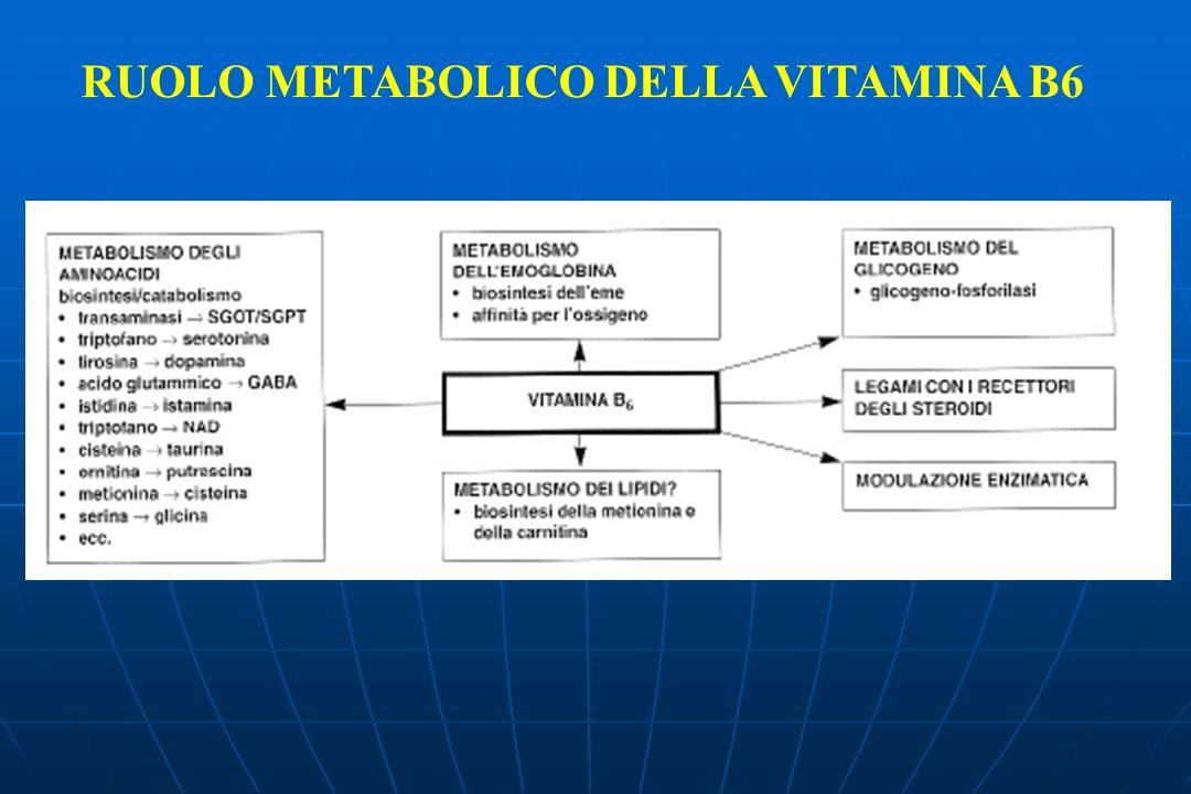 RUOLO METABOLICO DELLA VITAMINA B6