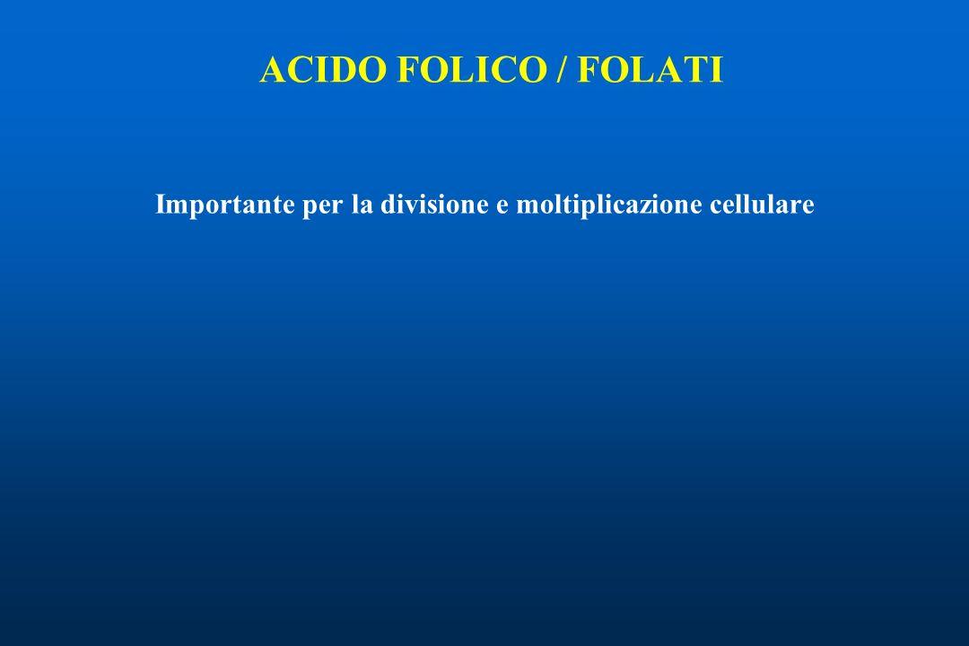 ACIDO FOLICO / FOLATI Importante per la divisione e moltiplicazione cellulare